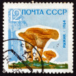 Postage stamp Russia 1964 Saffron Milk Cap, Mushroom — Stock Photo