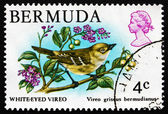 Postage stamp Bermuda 1978 White-eyed Vireo, Songbird — Stock Photo