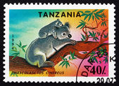 Postage stamp Tanzania 1994 Koala, Animal — Stock Photo
