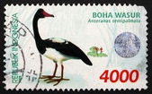 Postage stamp Indonesia 1998 Magpie Goose, Waterbird — Stock Photo