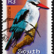 Postage stamp South Africa 2000 Woodland Kingfisher, Bird — Stock Photo