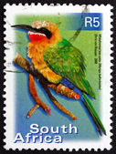 Postage stamp South Africa 2000 White-fronted Bee-eater, Bird — Stock Photo