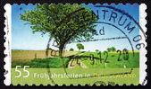 Postage stamp Germany 2012 Spring Break — Stock Photo