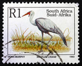 Postage stamp South Africa 1993 Wattled Crane — Stock Photo