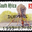 Постер, плакат: Postage stamp South Africa 1998 Giraffe Animal