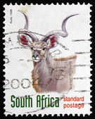 Postage stamp South Africa 1998 Greater Kudu, Antelope — Stock Photo
