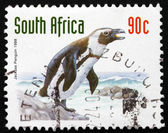 Postage stamp South Africa 1998 Jackass Penguin, Bird — Stock Photo