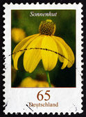 Postage stamp Germany 2009 Rudbeckia, Flowering Plant — Photo