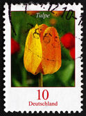 Postage stamp Germany 2005 Tulip, Flowering Plant — Photo