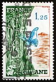 Postage stamp France 1976 French Guiana — Stock Photo