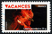 Postage stamp France 2009 Rooster's Head — Stock Photo