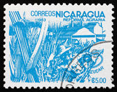 Postage stamp Nicaragua 1983 Sugar Cane, Agrarian Reform — Stock Photo