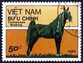 Postage stamp Vietnam 1989 Tennessee Walking Horse — Stock Photo