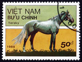 Postage stamp Vietnam 1989 Tersk Horse — Stock Photo