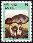 Postage stamp Vietnam 1987 Grey Knight, Mushroom — Stock Photo