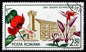 Postage stamp Romania 1965 Hibiscus and Bird-of-paradise Flower — Stock Photo