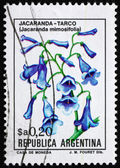 Postage stamp Argentina 1983 Blue Jacaranda, sub-tropical Tree — Stock Photo