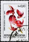 Postage stamp Argentina 1983 Cockspur Coral Tree, Erythrina Cris — Stock Photo