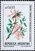 Postage stamp Argentina 1985 Chilean Firetree, Small Evergreen T — Stock Photo