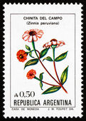 Postage stamp Argentina 1985 Peruvian Zinnia, Flowering Plant — Stock Photo