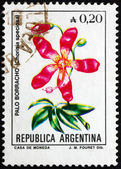 Postage stamp Argentina 1985 Silk Floss Tree — Stock Photo