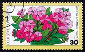 почтовая марка германии 1976 флокс, цветы — Стоковое фото