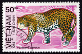 Postage stamp Vietnam 1984 Leopard, Big Cat — Stock Photo