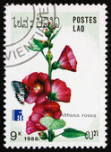 Postage stamp Laos 1988 Hollyhock, Ornamental Plant — Stock Photo