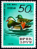 Postage stamp North Korea 1979 Mandarin Duck — Stock Photo