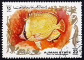 Postage stamp Ajman 1972 Tropical Fish — Stock fotografie