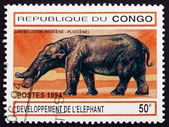 Postage stamp Zaire 1994 Amebelodon, Prehistoric Animal — Stock Photo
