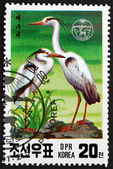 Postage stamp North Korea 1991 Gray Heron, Wading Bird — Stock Photo