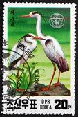 Postage stamp North Korea 1991 Gray Heron, Wading Bird — Stock Photo