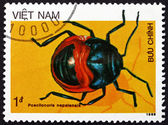 Postage stamp Vietnam 1986 Shield Bug, Insect — Stock Photo