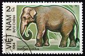 Postage stamp Vietnam 1984 Indian Elephant — Stock Photo