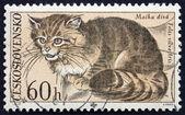 Postage stamp Czechoslovakia 1967 Wild Cat — Foto Stock