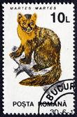 Postage stamp Romania 1993 Pine Marten — Stock Photo