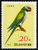 Postage stamp North Korea 1975 Nicobar Parakeet, Bird — Stock Photo