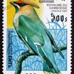 Постер, плакат: Postage stamp Cambodia 1997 Bohemian Waxwing Bird