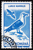 Postage stamp Romania 1991 Great Black-backed Gull, Bird — Photo