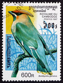 Postage stamp Cambodia 1997 Bohemian Waxwing, Bird — Stock Photo