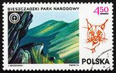 Postage stamp Poland 1976 Bieszczadzki Park and Lynx — Stock Photo