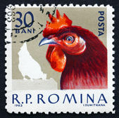 Postage stamp Romania 1963 Hen, Domestic Poultry — Photo