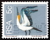 Postage stamp South Africa 1974 Cape Gannet, Seabird — Stock Photo