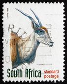 Postage stamp South Africa 1998 Eland, Antelope — Stock Photo