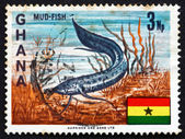 Postage stamp Ghana 1967 West African Lungfish — Foto de Stock