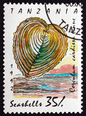 Postage stamp Tanzania 1992 Heart Cockle, Seashell — Stock Photo