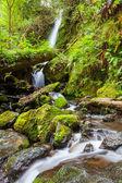 Waterfall in Olympik — Stock Photo
