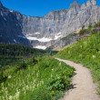 Hike in Glacier Park — Stock Photo