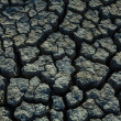 Drought land — Stock Photo #12441154